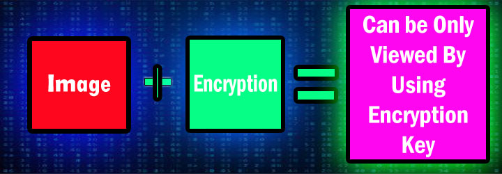 Image encryption tool to protect the website from the mitm attack
