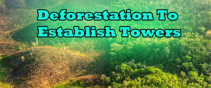 What is the Relationship Between Deforestation And Climate Change ...